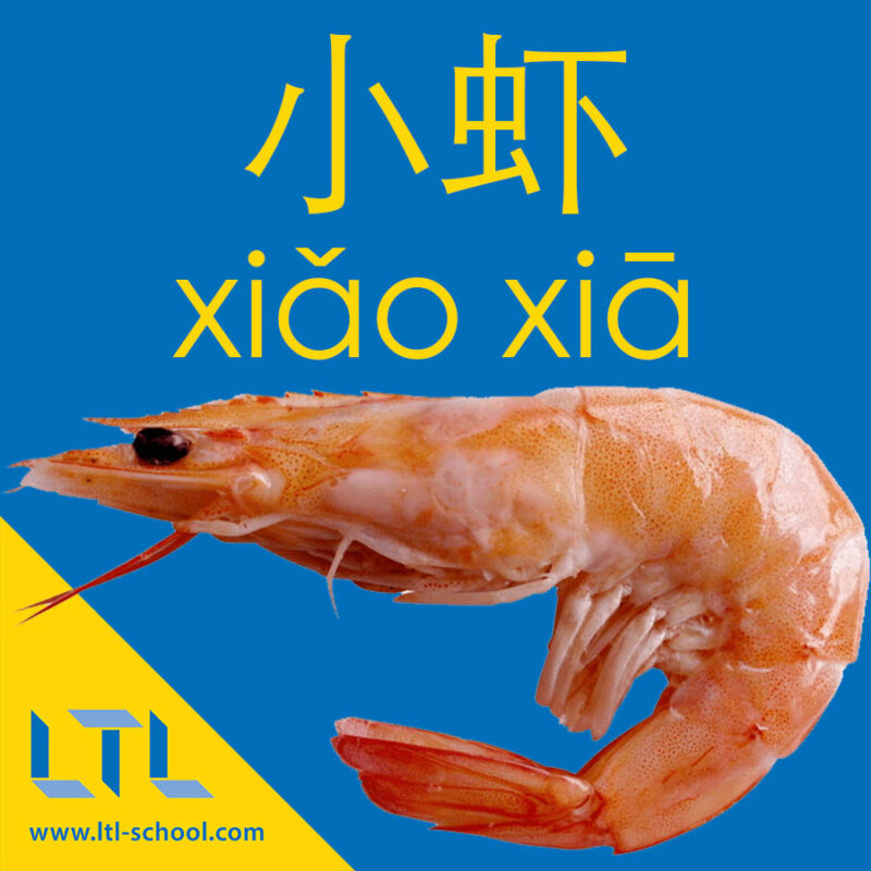 Shrimp in Chinese